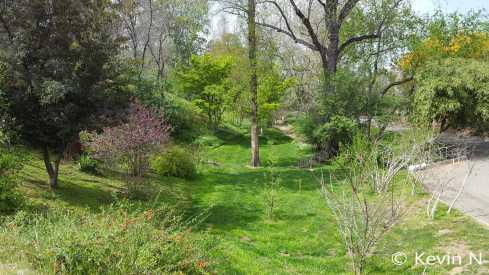 ucr botanic garden spring 2017 (3)
