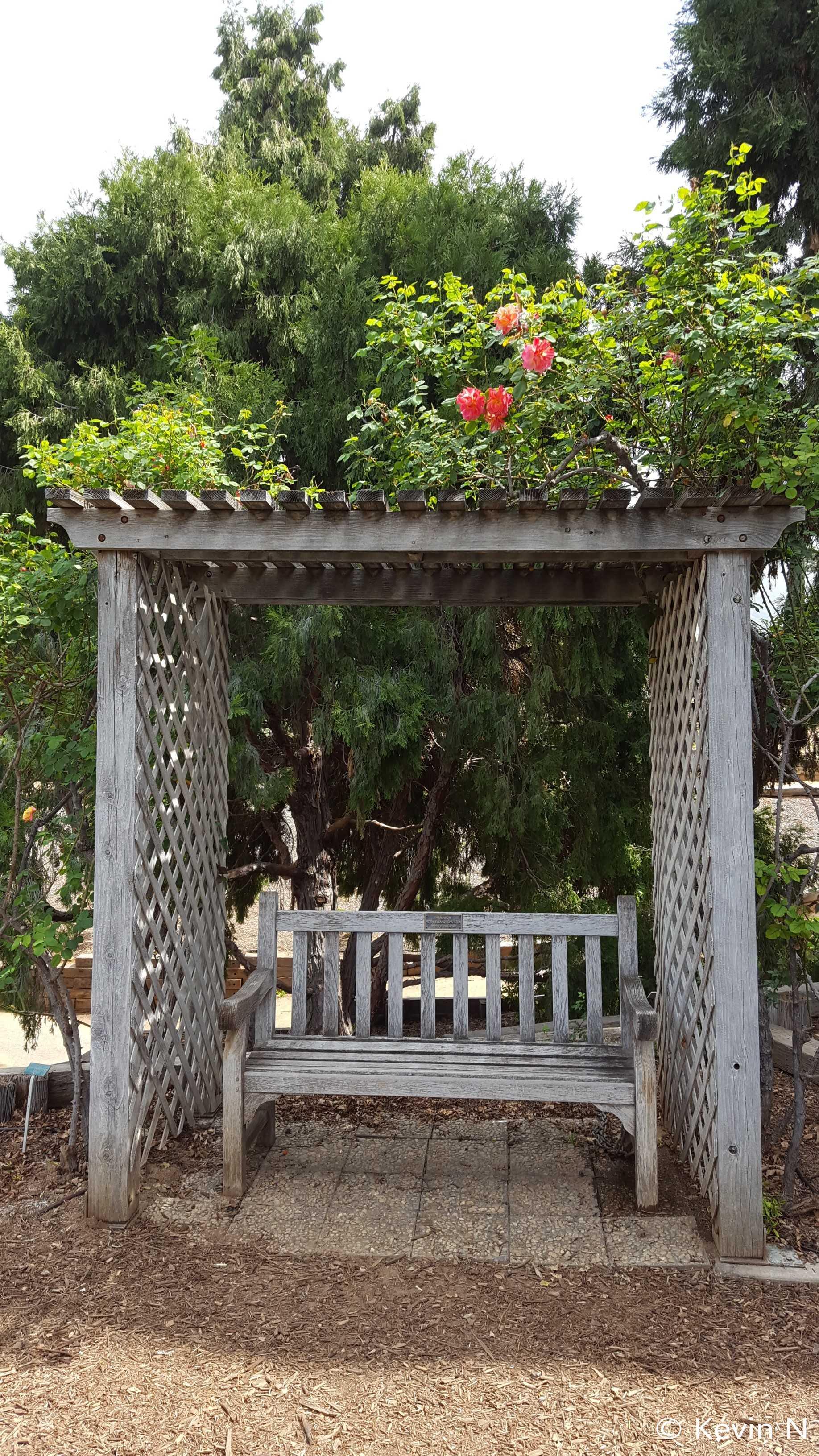 Ucr Botanic Garden Spring 2017 (6)