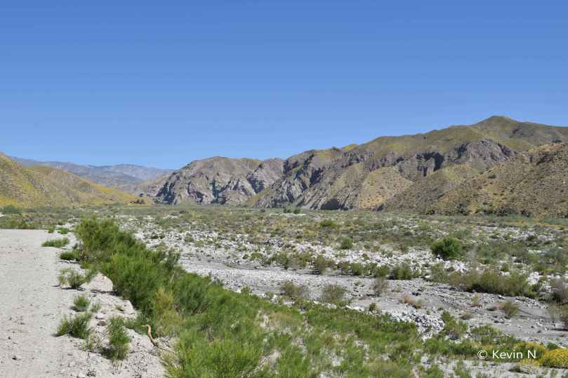 Whitewater Preserve (10)
