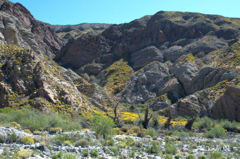 Whitewater Preserve (14)