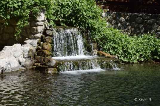 Whitewater Preserve (17)