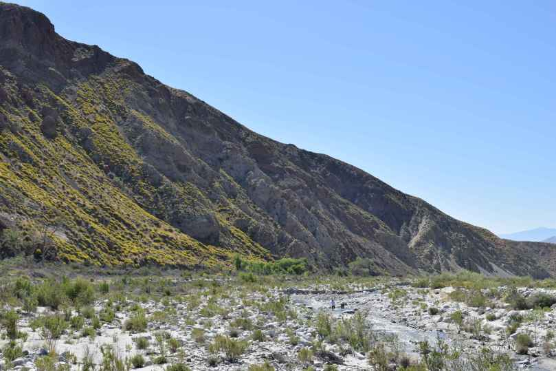 Whitewater Preserve (19)