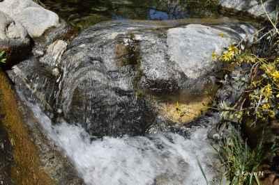 Whitewater Preserve (7)